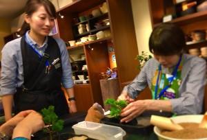 今日は五葉松の盆栽をつくる授業が行われました。