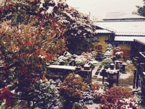 雪の清香園を二階からパチリ