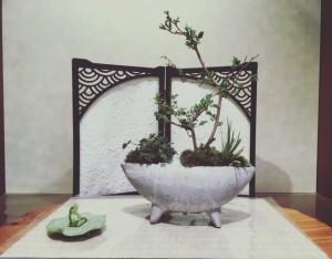 こちらは雪柳の仲間でシジミバナという4・5月頃に小さく咲く樹をメインに、きゅっと景色を凝縮させた作品。