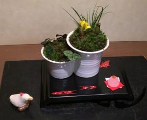 昨日盆栽町で行われた、屏風と地板づくり講座で生徒さんの蓮沼さんがお作りになった地板です!そして、本日の講座で蓮沼さんがお作りになった彩花盆栽! 連日のご参加でとっても春らしい迎春飾りが完成しました!