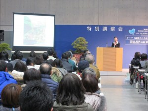 壇上の五葉松は芳樹園の会長さん愛蔵の五葉松。五十年以上手塩にかけてこられたそうです!